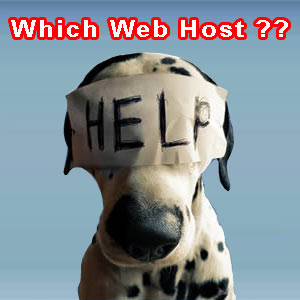 How To Select The Right Hosting Company For Your Blog